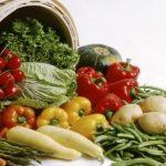 Castelo Branco organiza primeira feira de inovação agroalimentar